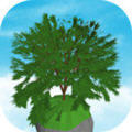 空闲树游戏破解中文版0.100