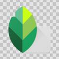 Snapseedapp手机照片编辑器v2.19.0.201907232