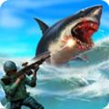 鲨鱼狩猎官方版1.8
