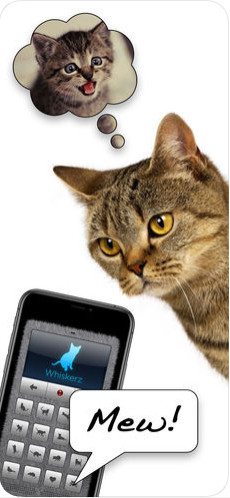 人猫交流器appv1.0截图0