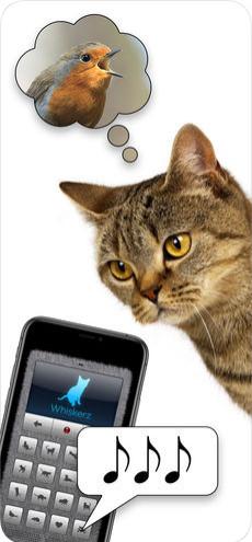 人猫交流器appv1.0截图2