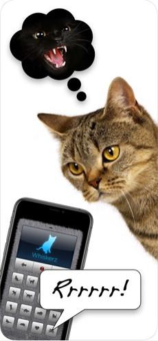 人猫交流器appv1.0截图1