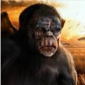 猿的终极冒险游戏最新版v1.2