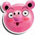 愤怒猪复仇游戏1.0