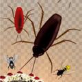 杀虫灭虫游戏最新版v1.208