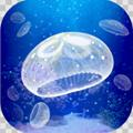 海蜇�B成游戏免费版v1.0