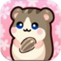 仓鼠好朋友安卓版1.0