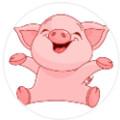 小白猪贷款app