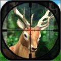 狩猎驼鹿手游安卓破解版1.1.4