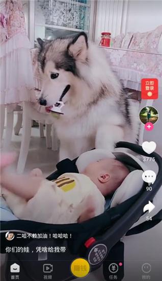 快狗视频app官方版v5.0.5.0截图2