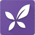 应用制作app手机版v1.1