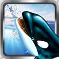 虎鲸的3D模拟器游戏最新版v1.2