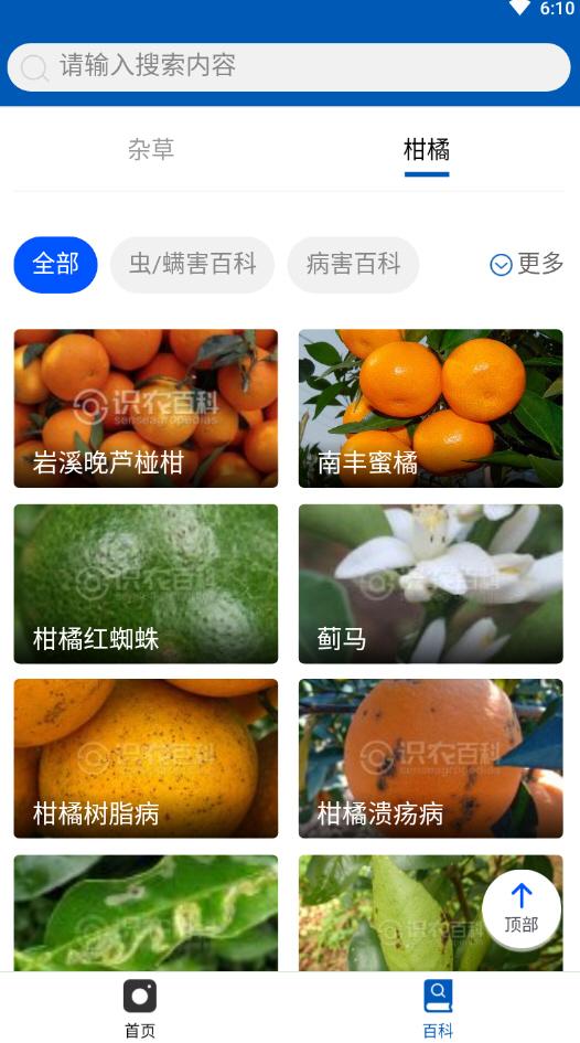 识农app安卓版v1.0.0截图1