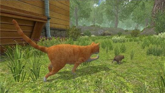流浪鼠家庭模拟器游戏v1.0截图0