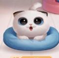 淘宝星秀猫拉人气工具v1.0安卓版