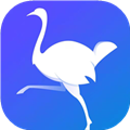 鸵鸟快讯app转发文章赚钱1.0红包版