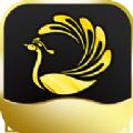 孔雀乐园兼职平台app1.0红包版