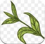 玫瑰茶园app种植赚钱1.0红包版