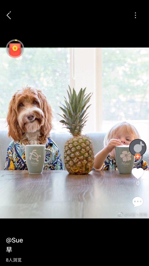 拍美app社交新平台1.0手机版截图2