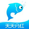 小猫种鱼分红版1.0.0提现版