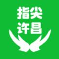 指尖许昌新闻资讯平台v1.1.0本地版