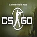 csgo纯净单板纹理透视辅助v1.0国外版