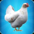 一只特立独行的鸡游戏完整版1.0汉化版