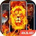 4D Wallpaper app安卓版1.56最新2021版