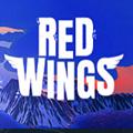 红翼:天空王牌steam中文补丁最新版