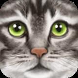 终极野猫模拟器满级破解版1.1最新版