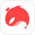 猎游app最新邀请码版4.0.0最新版