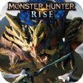 怪物猎人崛起极限护石金手指1.1.2中文版