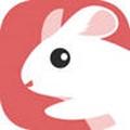 ���速�app�D�l文章��X1.0.4最新版