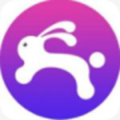 兔子ip安全版v1.0正式版