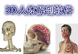 3D影像解剖图谱app有哪些